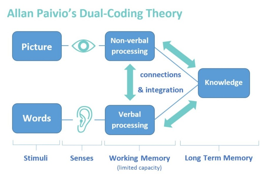 paivio dual coding